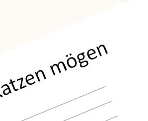 Katzen_mogen